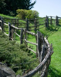 winding-fence-neighbor-lg