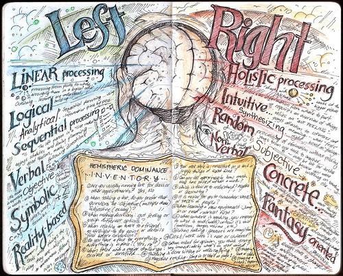right left brain
