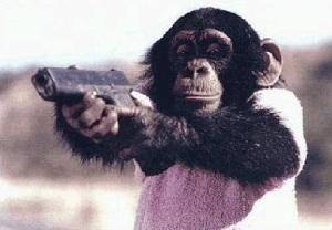 monkey_glock