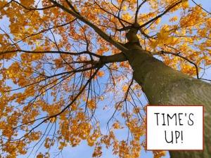 timesup2