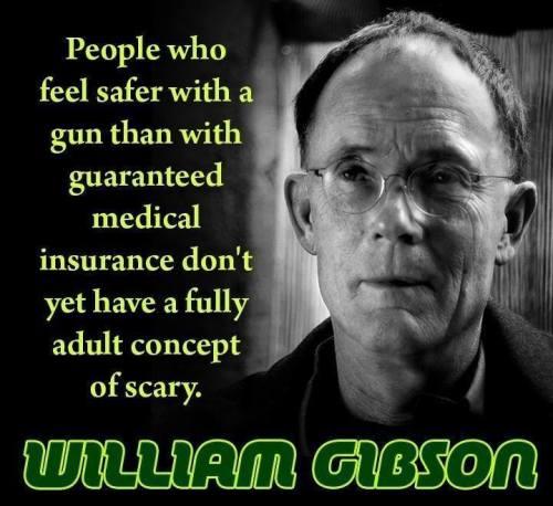 gun vs insurance