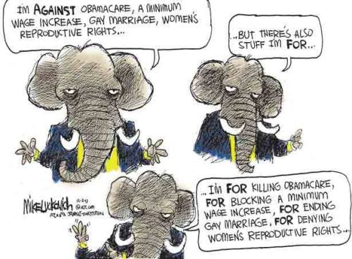 what gop is FOR