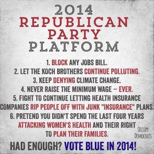 2014 republican platform