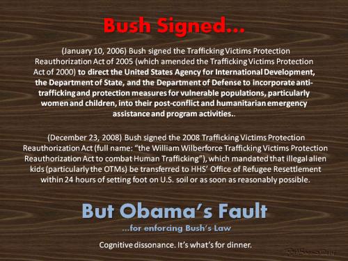Obamas fault