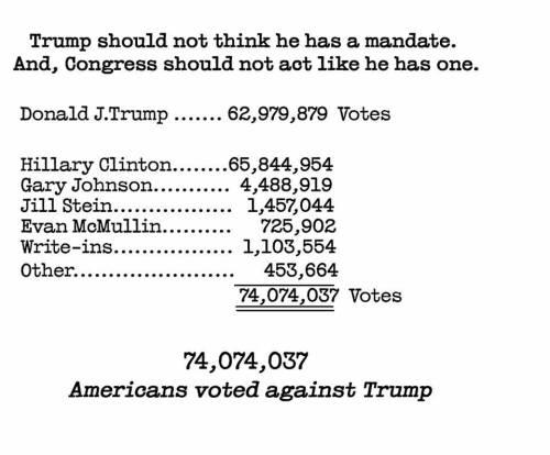 america-voted-against-trump