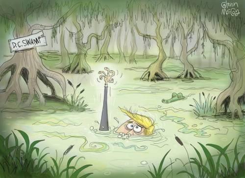 DC swamp